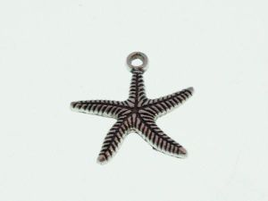 Pendant Big Seastar (bag)