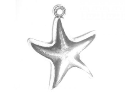 Pendant  Smooth seastar (bag)