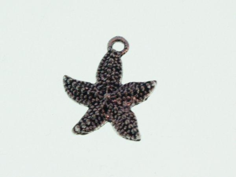Pendant  Seastar thicker (bag)